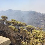 Incendi-Messina